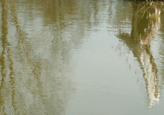 IMAGO TRANSITUS  –  L 'étang